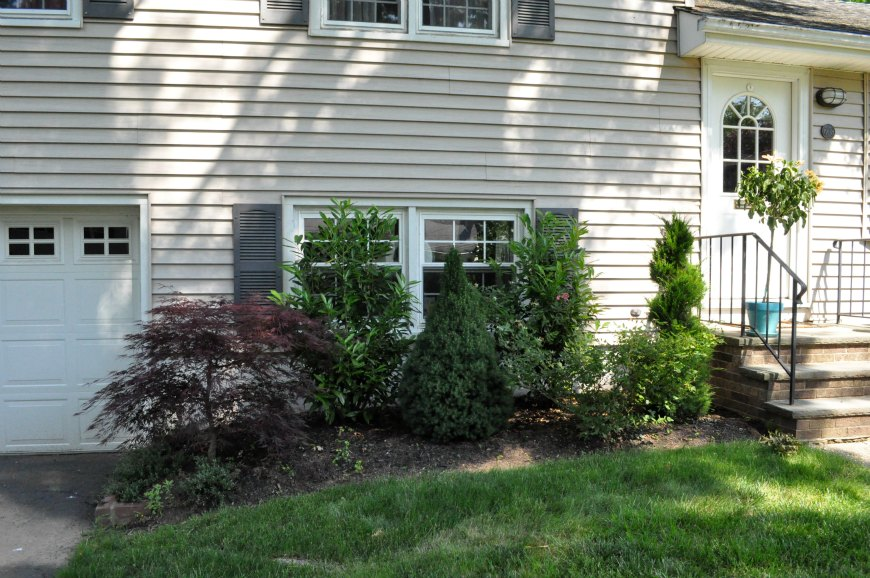 shrubs-029