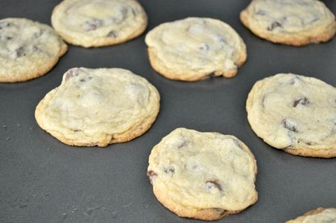 taras cookies 030